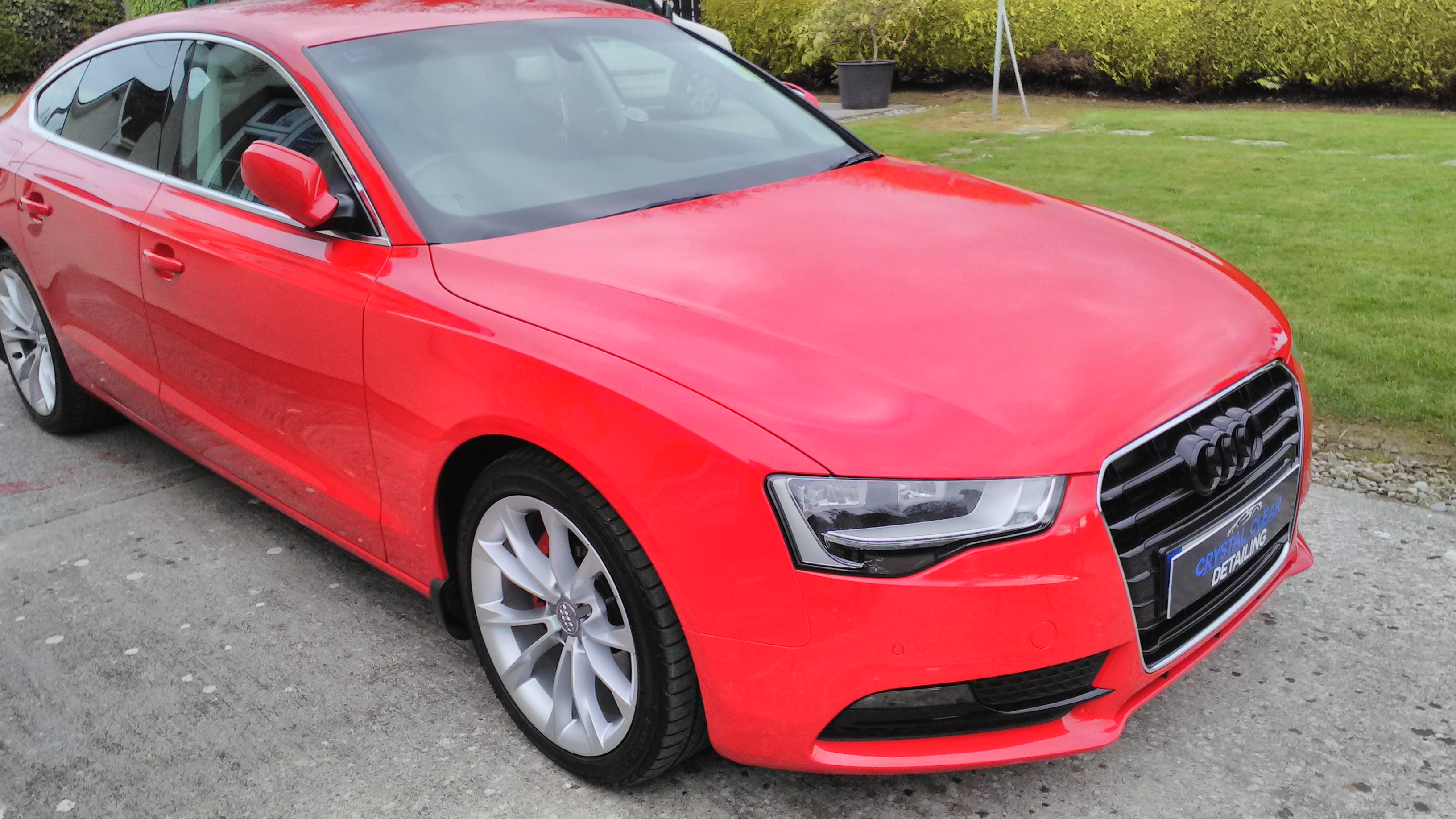 Audi A5 - Paint Enhancement Detail